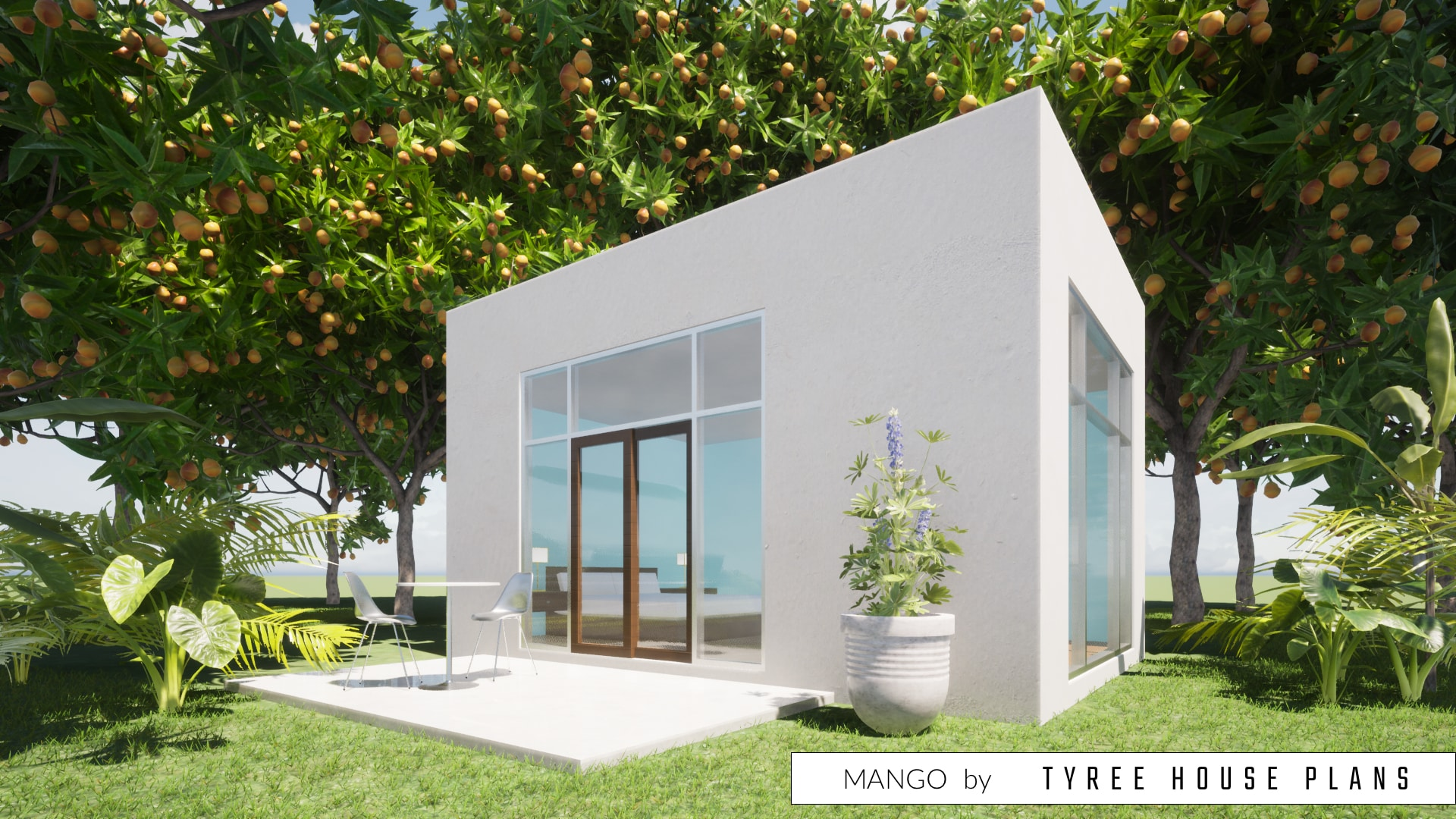 Mango House Plan by Tyree House Plans